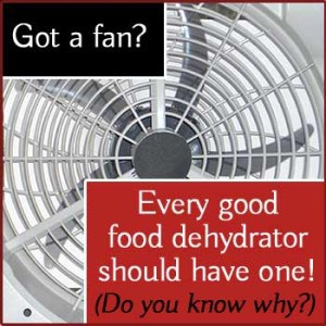Every good food dehydrator should have a fan. Do you know why?